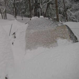 大雪を乗り切った!