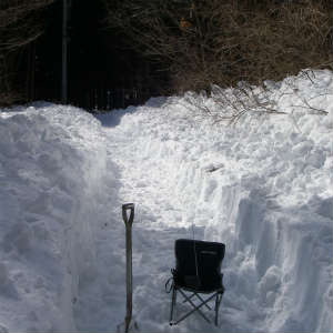 なんとなく除雪に慣れてきた。