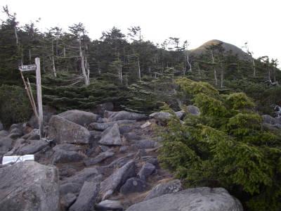 中山展望台への分岐