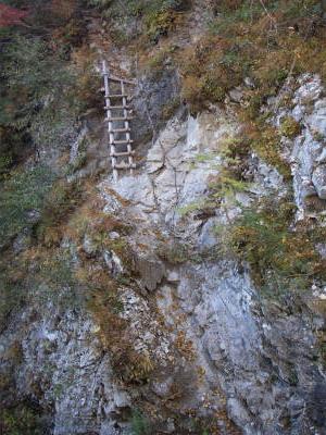 梯子と鎖のコンビネーション