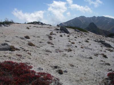 南沢岳のピークはだだっ広い。視界不良時注意。