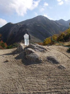 枯山水とプラティパス