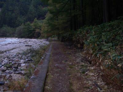高瀬川の右岸に整備された道を歩いてゆく。