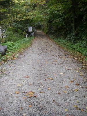 広場からはさらに快適な林道歩き