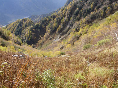 終わりかけの紅葉を眺めながら下山してゆく。