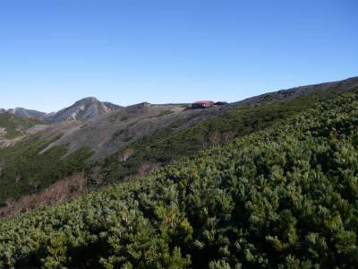 樹林帯を抜けると蝶ヶ岳ヒュッテが見えてきた。