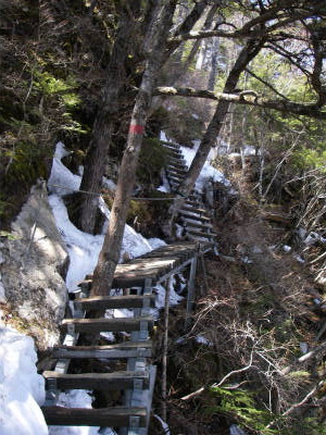 木の階段を登る時はアイゼンの爪を引っ掛けて転ばないように慎重に歩く。