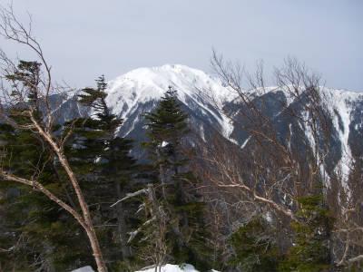 仙丈ヶ岳が見えてきた。