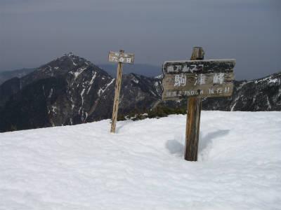再び駒津峰にやって来た。