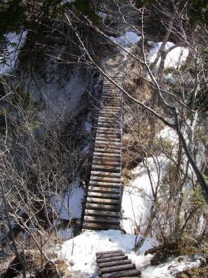 木の橋を渡る。