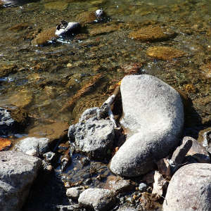 川で水浴び、洗濯をして経費節約