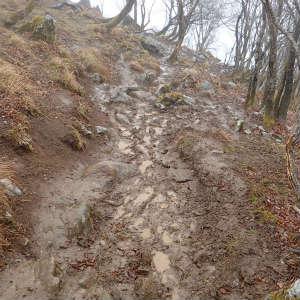 泥濘の藤原岳