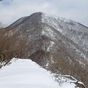 孫太尾根から藤原岳