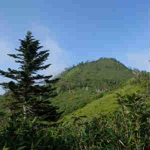 初夏の鳥甲山