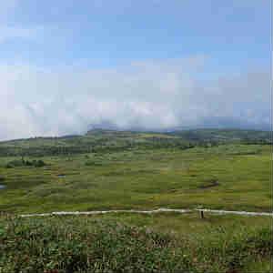 雲上の楽園、苗場山